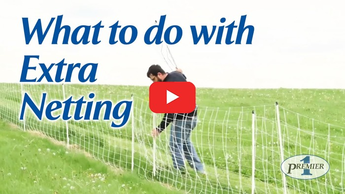 How to Manage Excess Netting