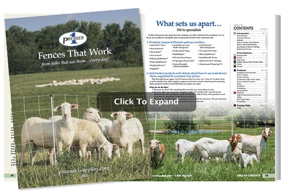 2020 Fences Digital Catalog