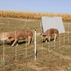 Electric fence - Pig QuikFence® 6/30/12 Electric Netting