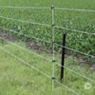 Electric fence - Anti-Deer Fence (2D Scented 5-Strand)