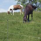 Electric fence - Rope or Tape Fences