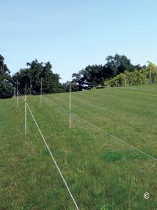 Electric Fencing Premier1supplies