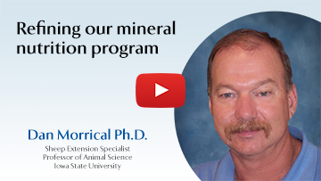 Refining our mineral nutrition program
