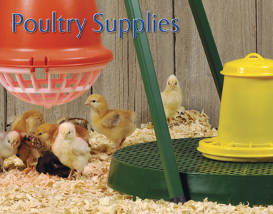 Premier Poultry Supplies