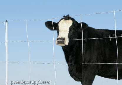 Cattle QuikFence