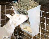 Grain and/or Hay Feeder