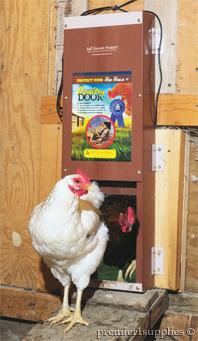 Poultry door