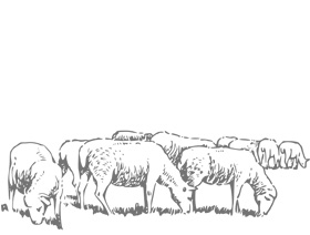What is rotational grazing?