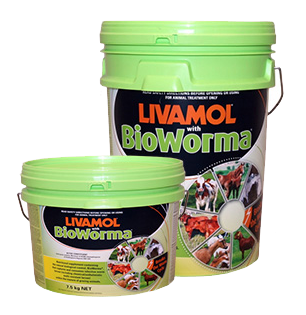 Livamol® with BioWorma®