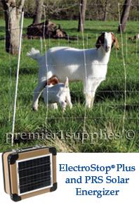 ElectroStop Plus