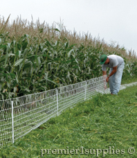 VersaNet 9/20/3 to protect sweet corn