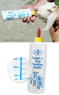 Lamb 'n' Kid Feeding Bottle