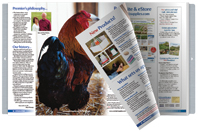 Poultry Flip-book