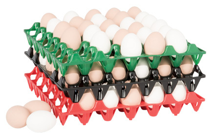 Photo of egg handling trays