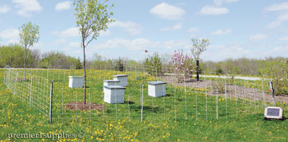 Protecting Hives with fences