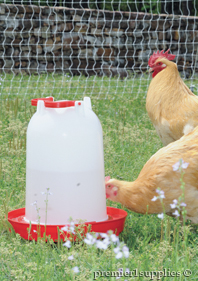 Poultry Feeders