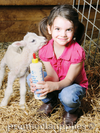 A Lamb 'N' Kid feeding bottle