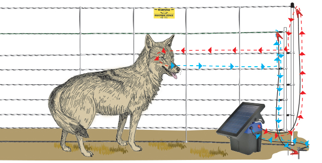 Pos/Neg electric fence diagram