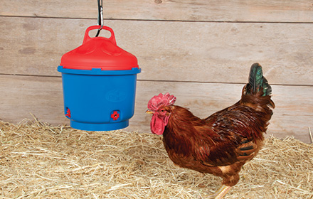 Improved! Heated Poultry Waterer
