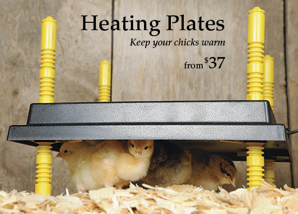 Heating Plates and Covers