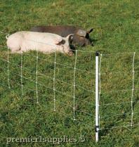 Creating a hog paddock