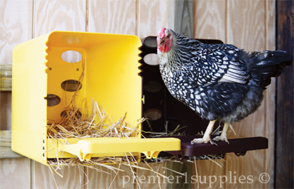 Make sure your nesting boxes offer adequate ventilation for your birds
