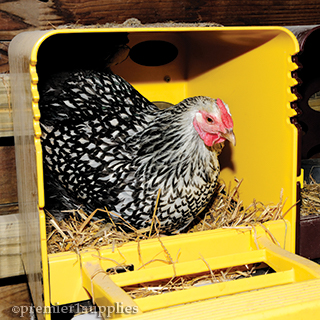 ChickBox Nesting Box