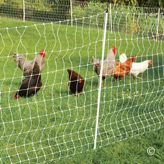 Electric Fence and Netting for Poultry - Premier1Supplies