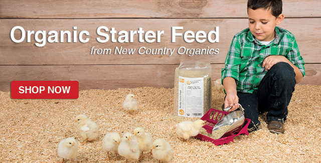 Organic Starter Feed for Poultry