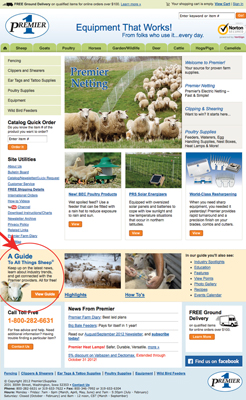All things Sheep