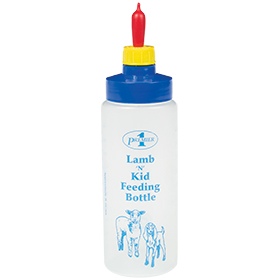 Wide Mouth Lamb 'N' Kid Feeding Bottle