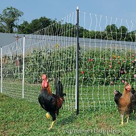 PoultryNet Plus®
