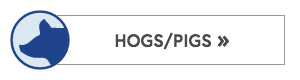 Hog and Pig Fences