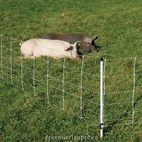 Pig QuikFence® 6/30/12