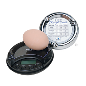 Digital Egg Scale $17