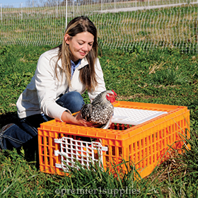 Poultry Crate