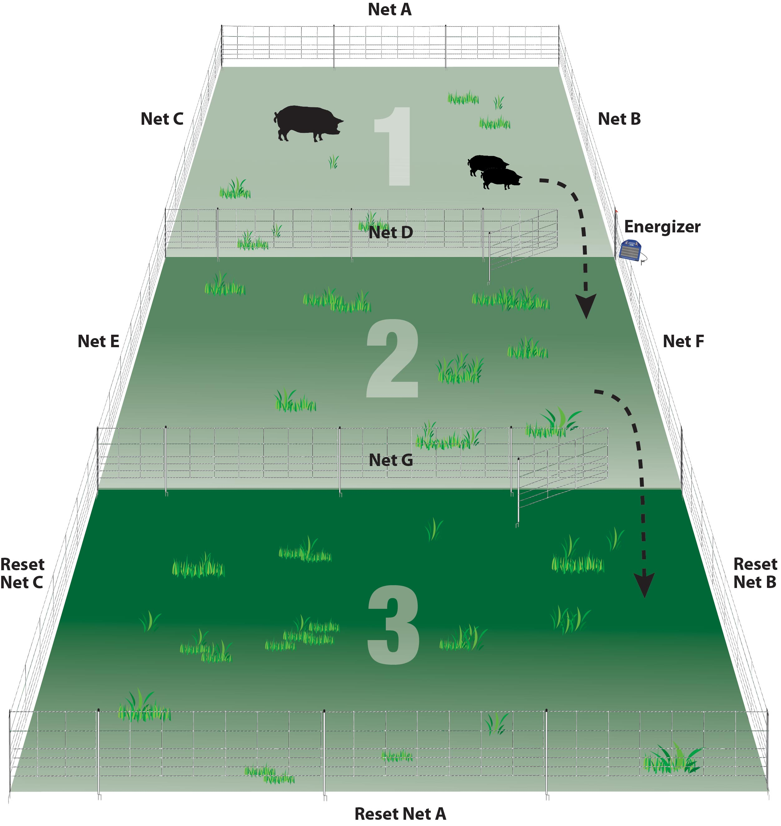 A seven net system for larger flocks.