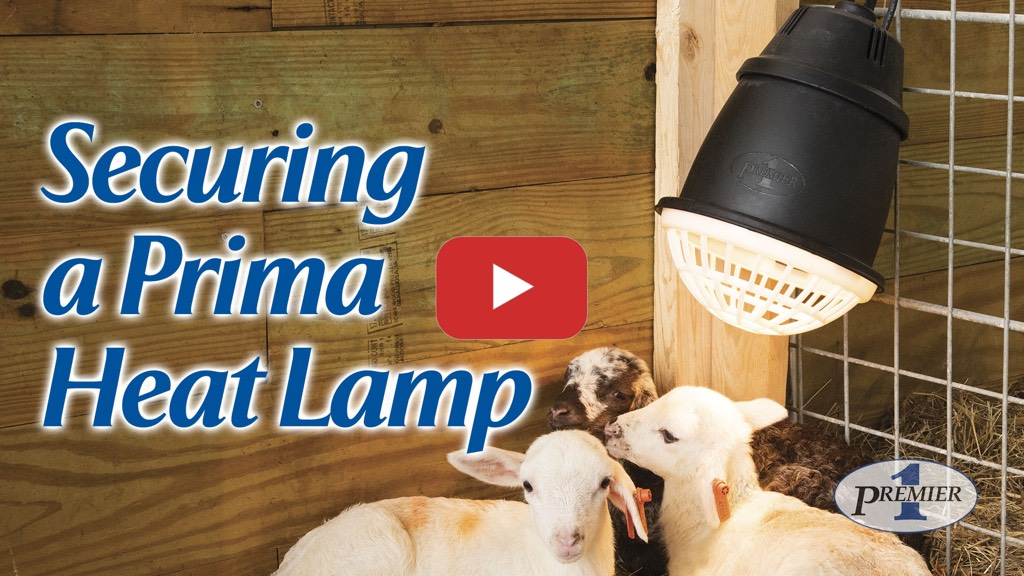 How to properly secure a Prima Heat Lamp