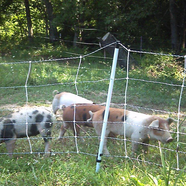 how to build a pig fence