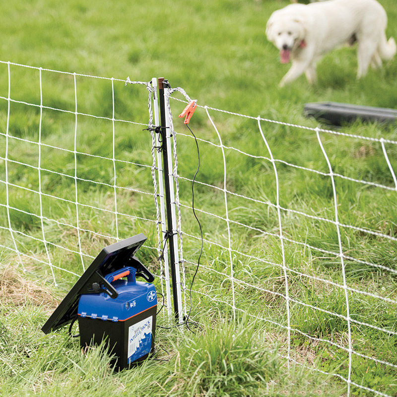 Premier 1 Poultry Fencing Solar Electric Dog Fence Kit