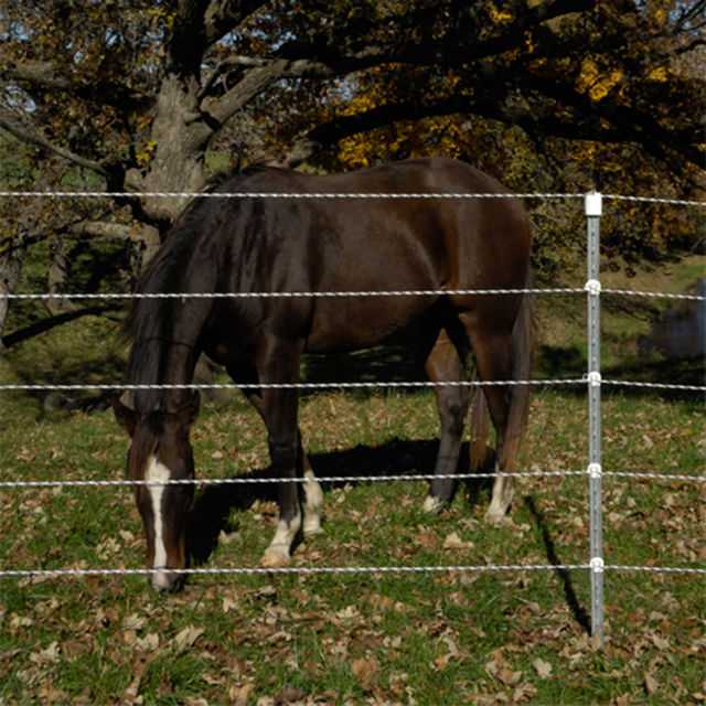 Rope Fences Up To 5 Strands For Horses Premier1supplies