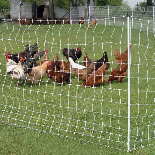 Poultrynet 174 12 42 3 Electric Netting Premier1supplies