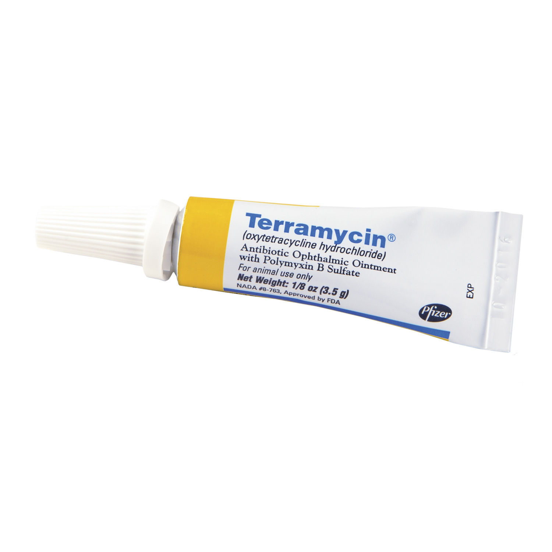 bystolic 10 mg cost