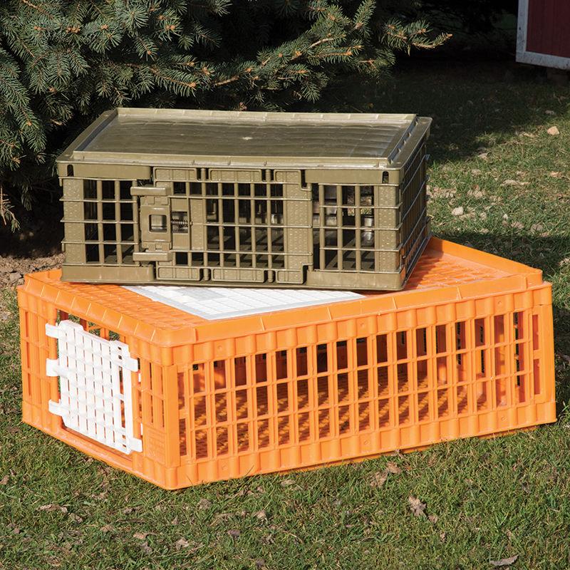 Poultry Crate - Premier1Supplies