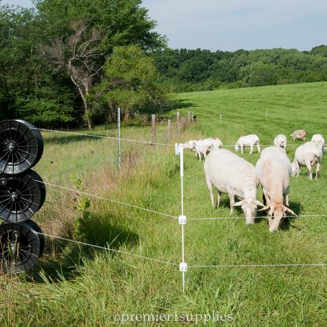 Multi-Strand Fences with Reels
