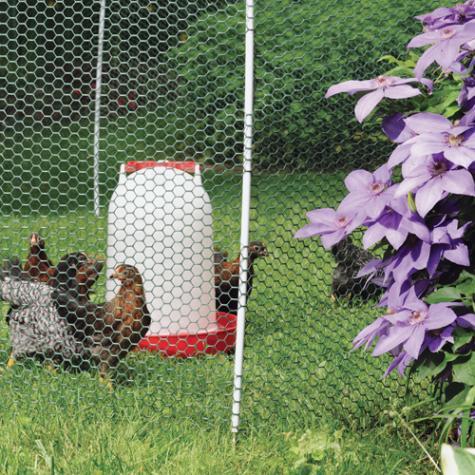 NoShock™ Chick Fence