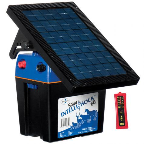 Solar IntelliShock® 60 Energizer with Wireless Tester (#113300)