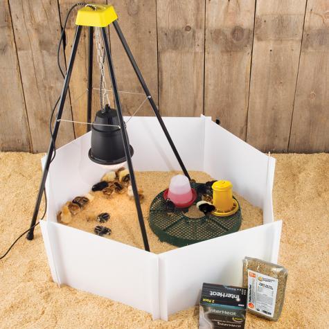 Heat Lamp Starter Kit For Chicks Premier1supplies