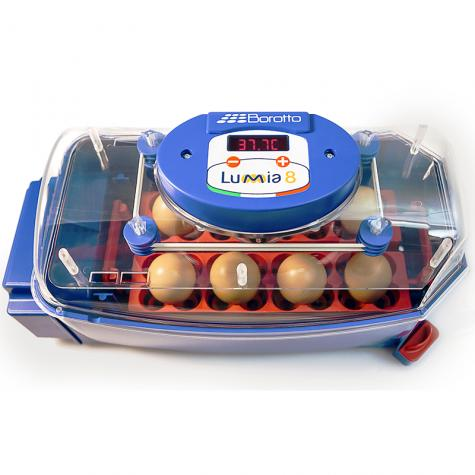 Lumia 8 Automatic Egg Incubator (#540252)