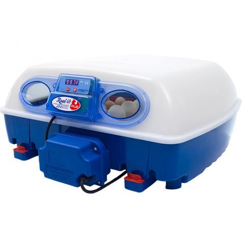 Real 49 Automatic Incubator (#540250)